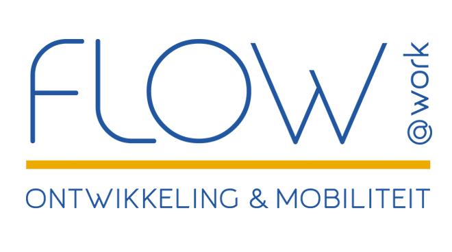Flow @ work coaching